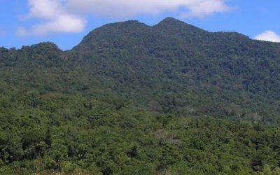 Menikmati Keindahan Puncak Gunung Mbeliling Labuan Bajo