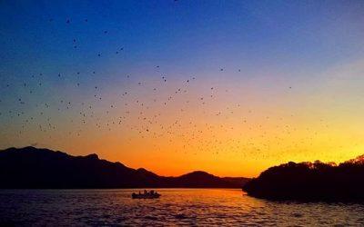 Pulau Kalong, Lokasi Wisata Dengan Spot Sunset Yang Mengagumkan