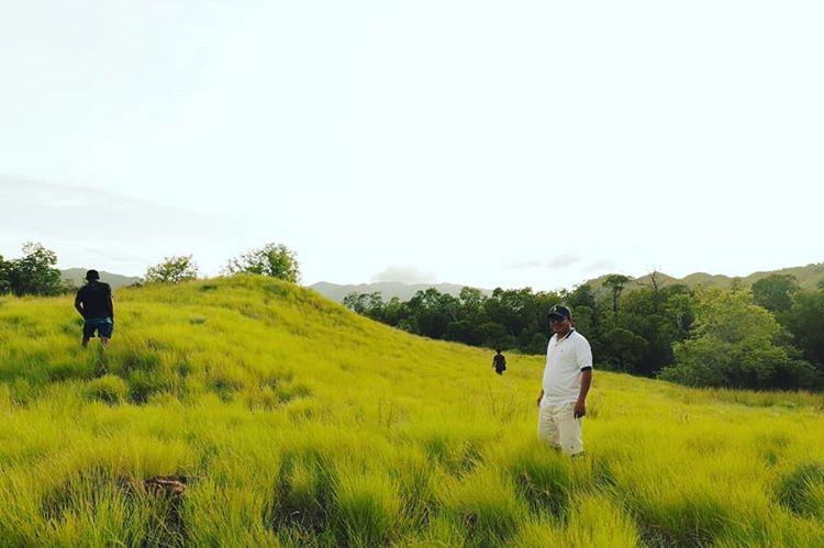 Padang rumput di pulau Kalong Taman Nasional Pulau Komodo, sumber ig @novitasarii_