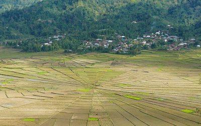 Desa Cancar, Pesona Keunikan Bentuk Sawah dan Adat Labuan Bajo