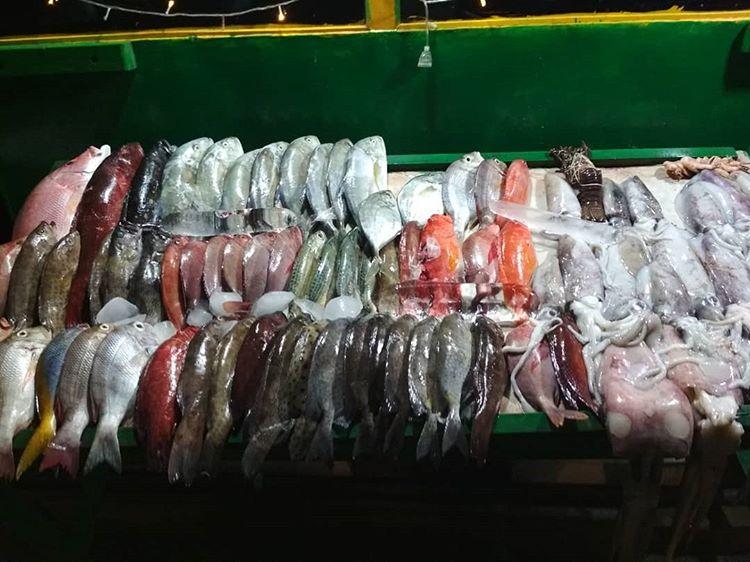 Pelelangan Ikan, sumber ig inderakodel12