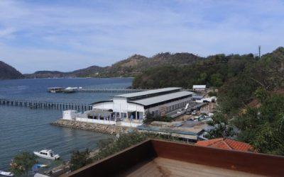 Tempat Pelelangan Ikan di Labuan Bajo yang Baru